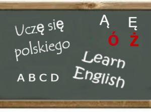 Языковые курсы для водителей